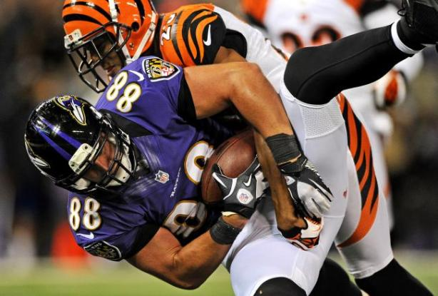 Born and bred a winner - Dennis Pitta